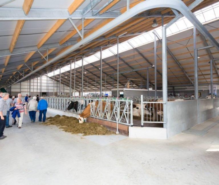 Koeienstal Wijers in Voorst | Schrijver Stalinrichting